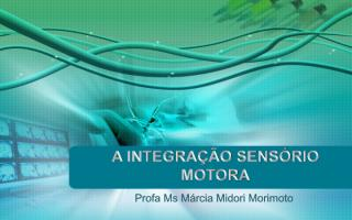 aula-06-integração%20sensorio%20motora%20e%20autismo[1].pdf