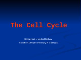 Lecture 9 Cell Cycle.ppt