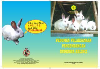 PEDUM KELINCI 2013.pdf