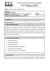 plano individual egito.doc