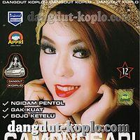 Ngidam Pentol - Wiwik Sagita - Gery Mahesa - New Pallapa Campursari 12 2013 dangdut-koplo.com.mp3